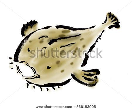 Anglerfish Stock Photos, Royalty.