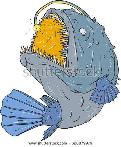 Anglerfish Stock Images, Royalty.