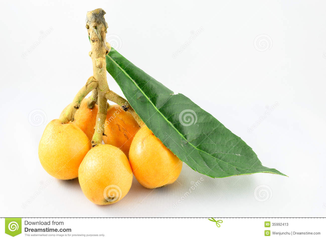 Loquat Fruit Stock Photography.