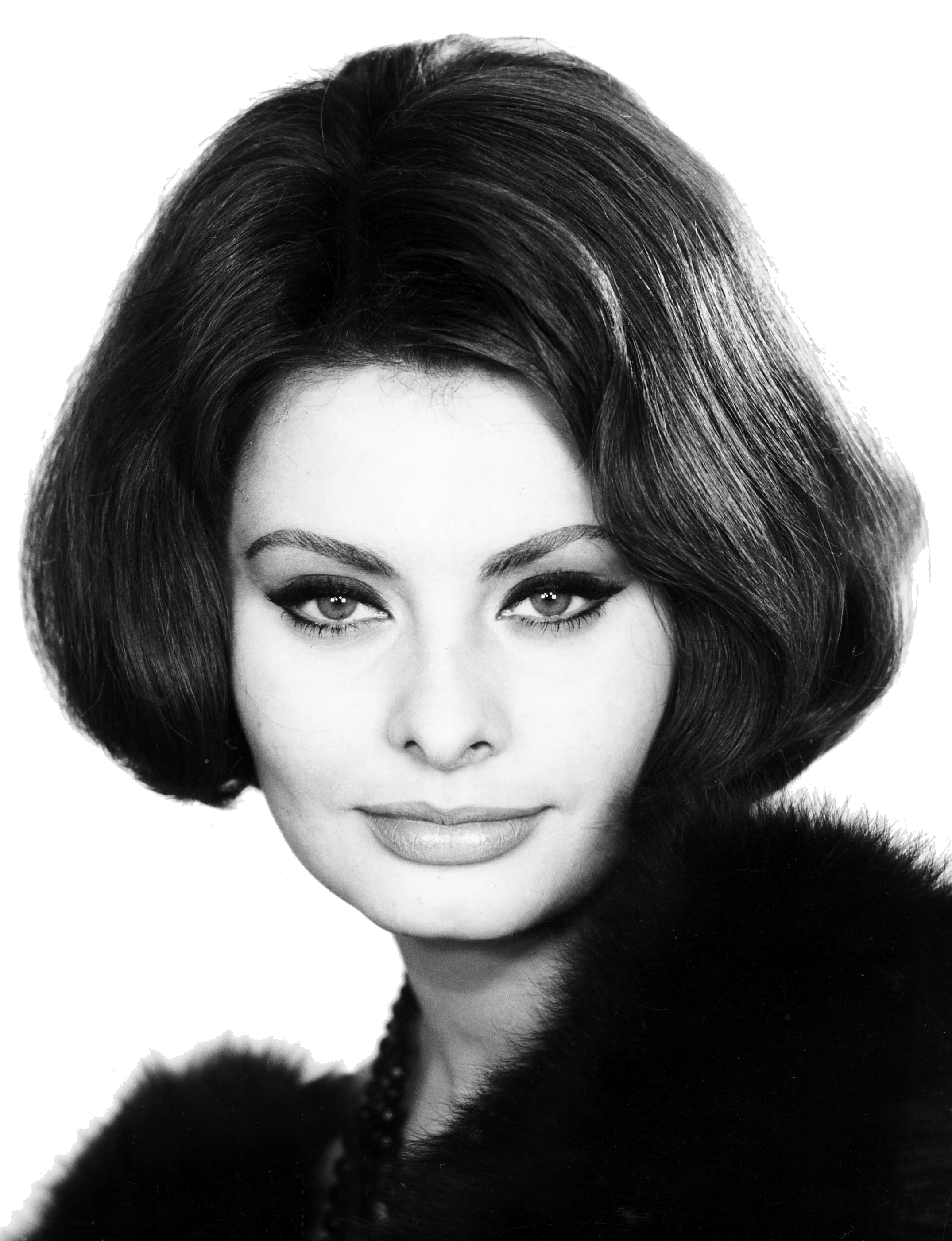 Sophia Loren Side View transparent PNG.