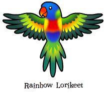 Rainbow lorikeet clipart.
