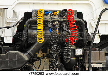 Stock Photo of Lory connections k7750293.