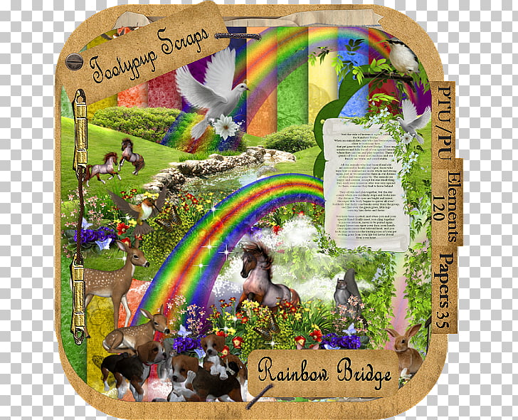 Dog Rainbow Bridge Cat Animal loss Pet, rainbow bridge PNG.