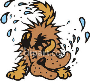 Clipart dog with a lot of fur.