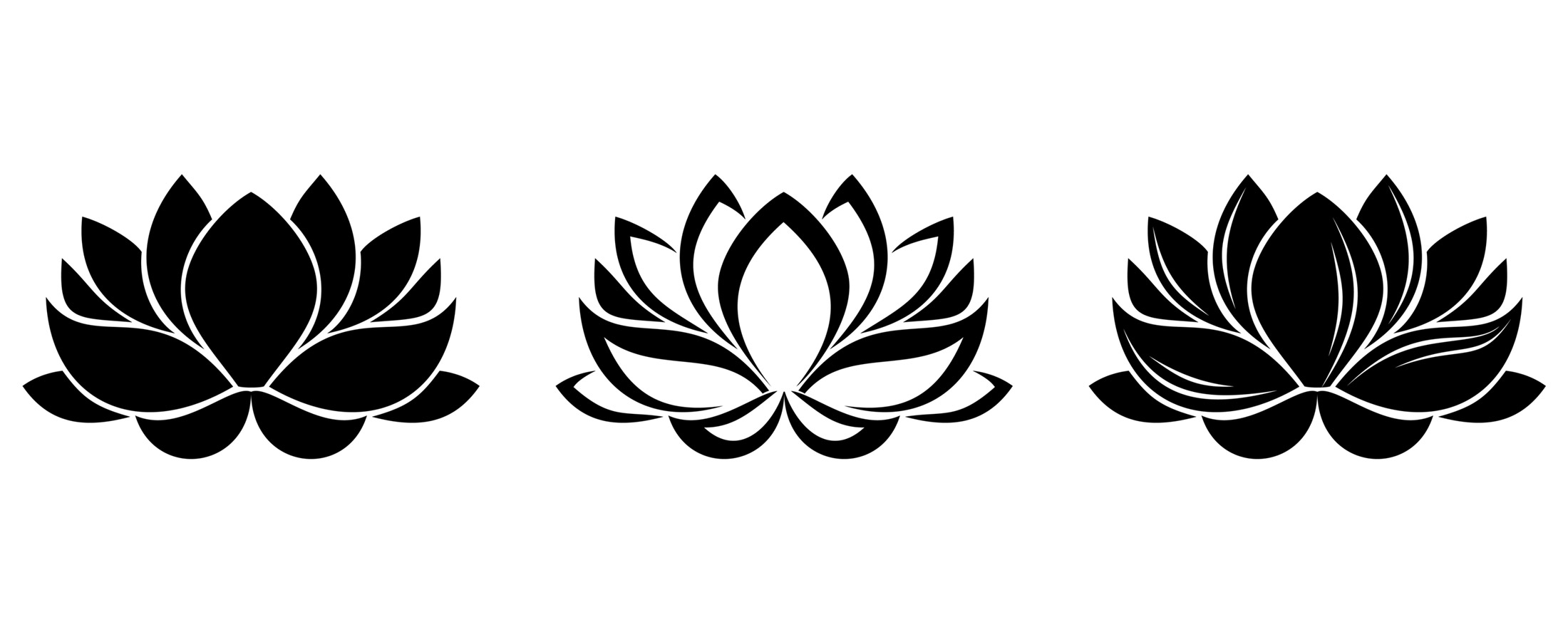 Lotus Flower Line Drawing Vector Free Download : Lotus clipart clipground