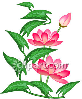 Pink Lotus Flowers Clipart Image.