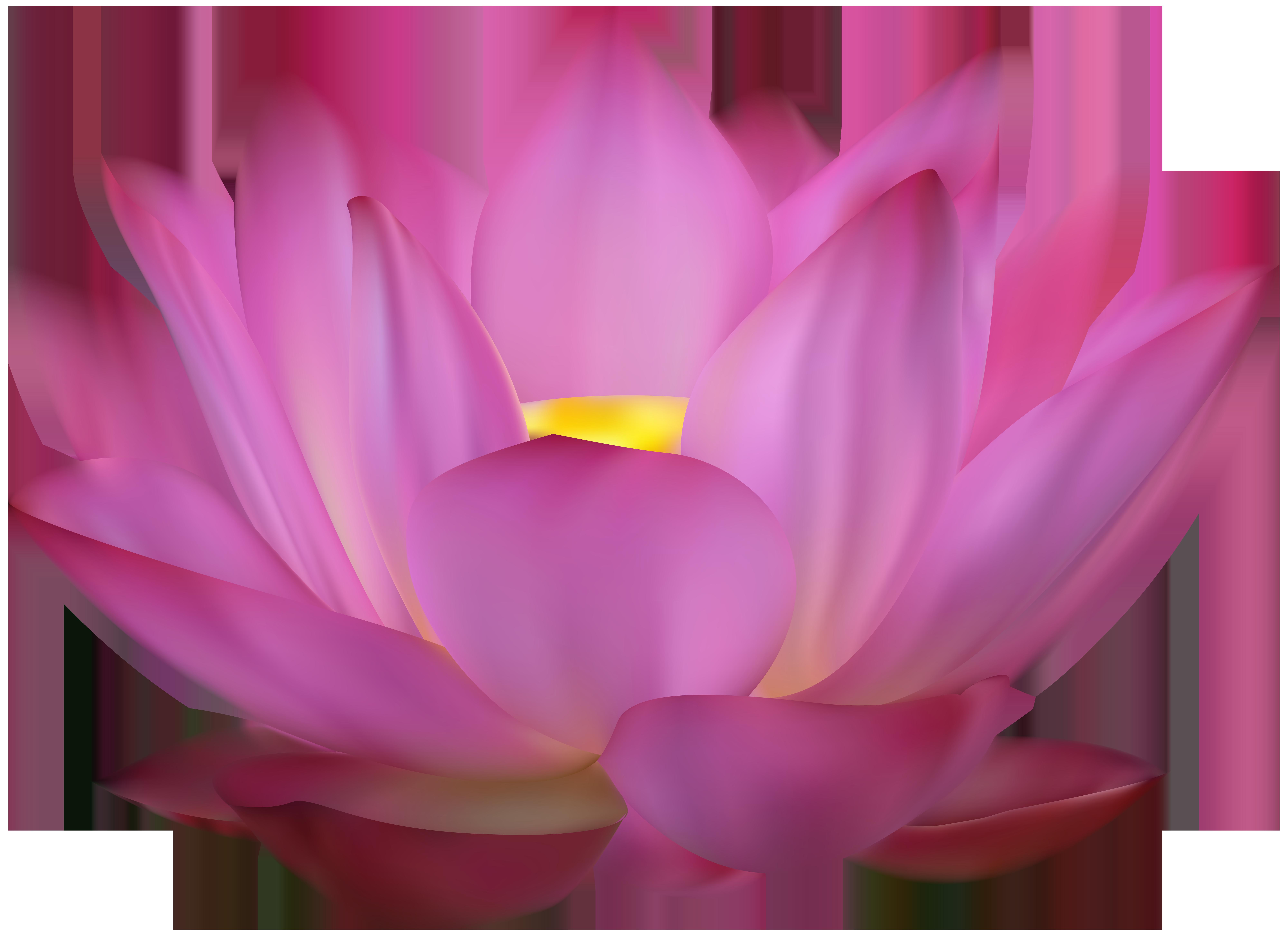 Pink Lotus Clip Art PNG Image.