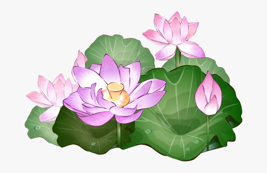 Pin Vase Clipart Lotus Flower.