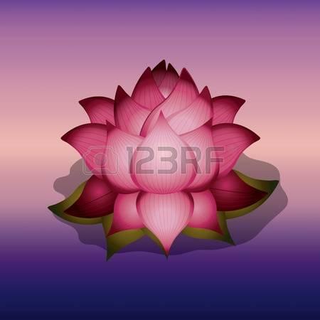 lotus flower illustration free #8