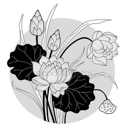 Lotus flower Stock Vectors, Royalty Free Lotus flower.
