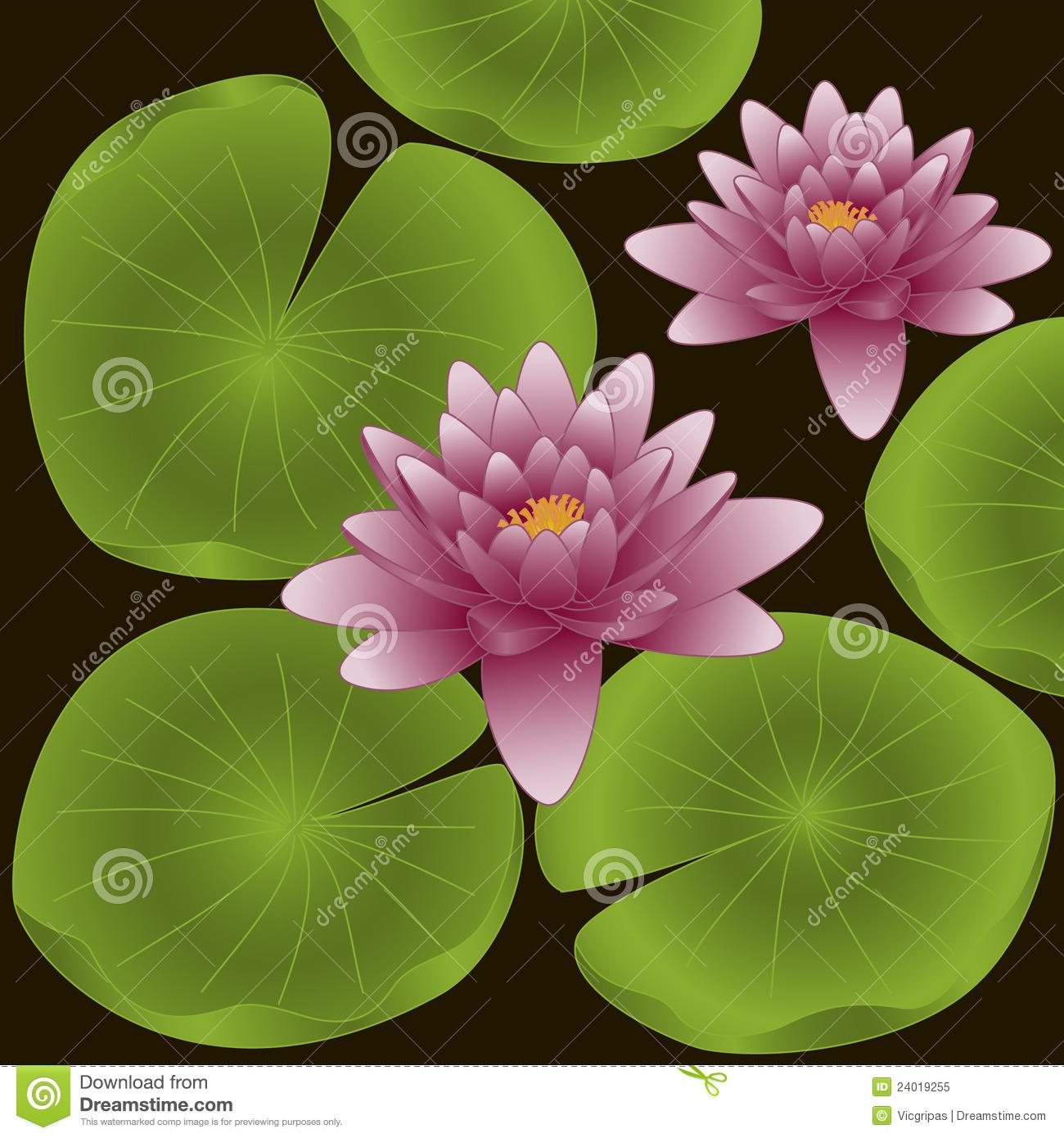 Lotus Flowers. Vector Illustration Royalty Free Stock Photo.