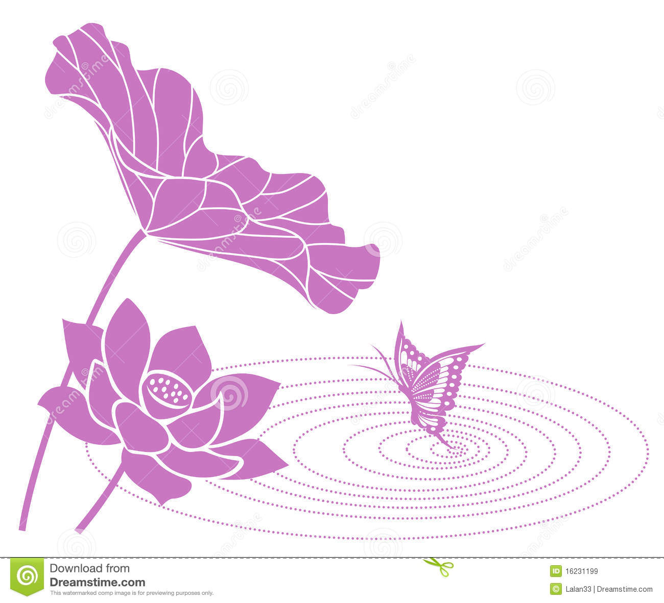 Lotus Flower Royalty Free Stock Images.