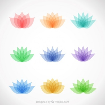 Lotus Flower Vectors, Photos and PSD files.