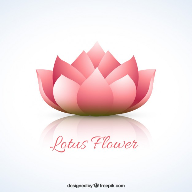 Lotus flower Vector.