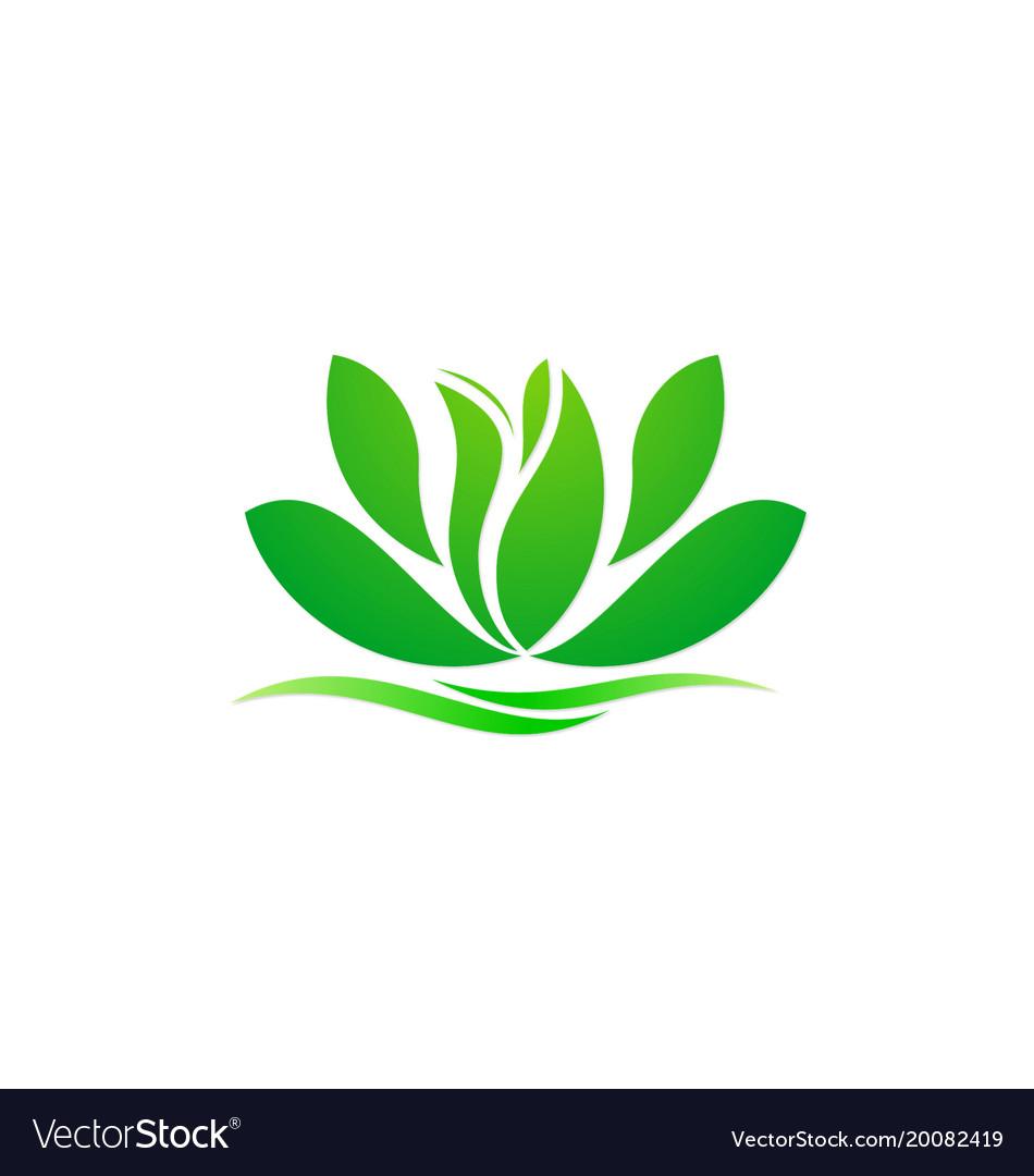 Lotus flower green spa beauty logo.