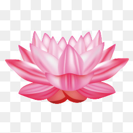 PNG Lotus Flower Transparent Lotus Flower.PNG Images..
