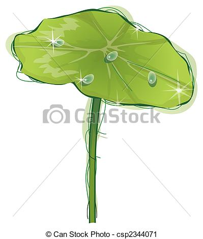 Clipart of lotus leaf.
