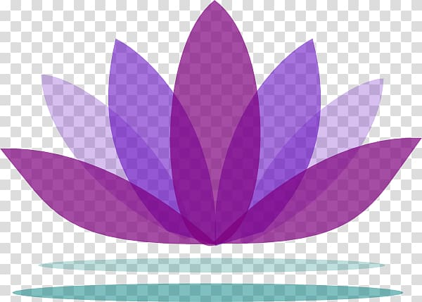 Purple lotus logo, Nelumbo nucifera , Lotus Background.