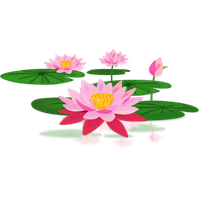 Download Lotus Free PNG photo images and clipart.