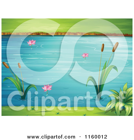 Cartoon of a Pond with Cattails and Lotus Flowers.