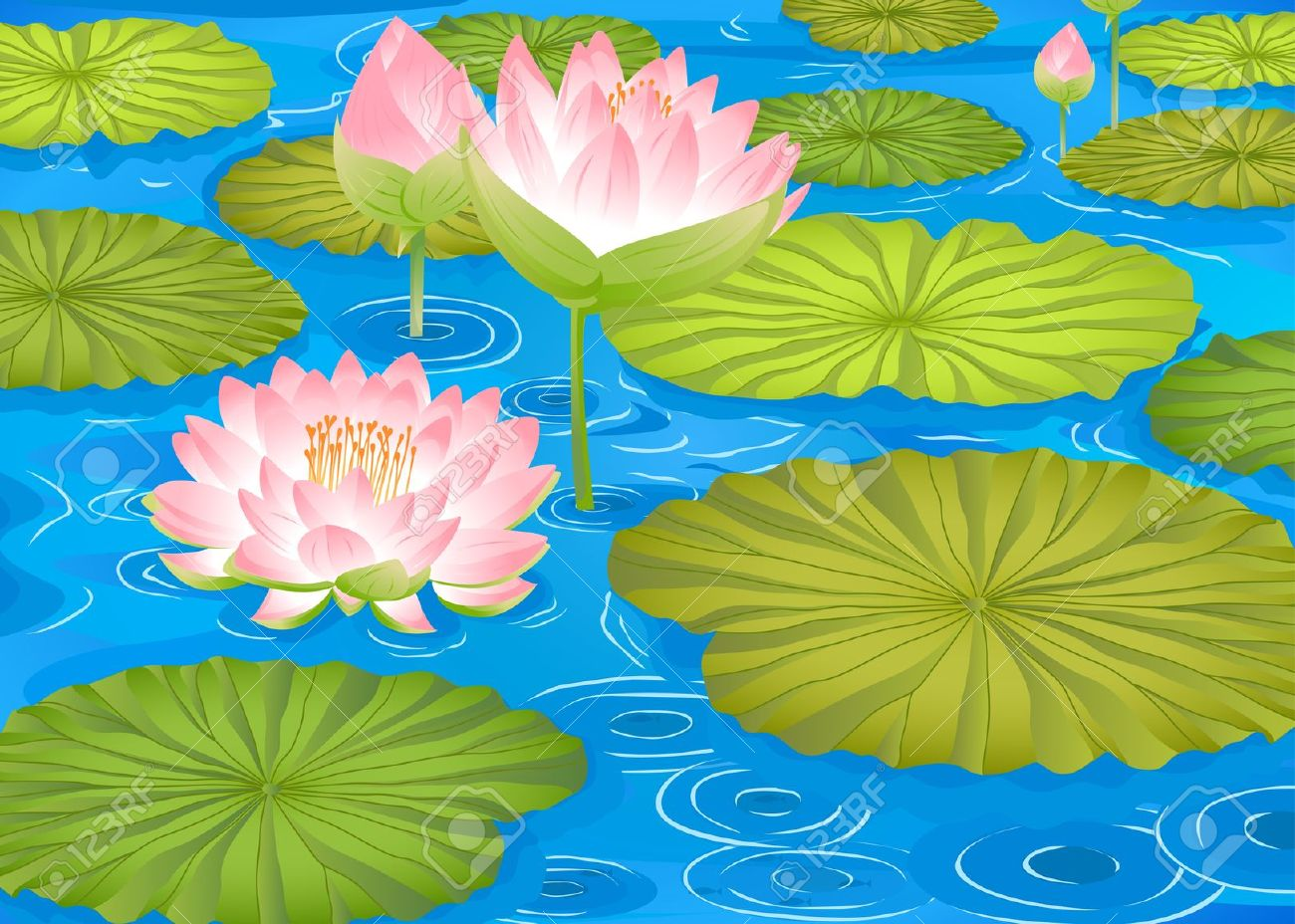Lotus Pond Clipart (62+).