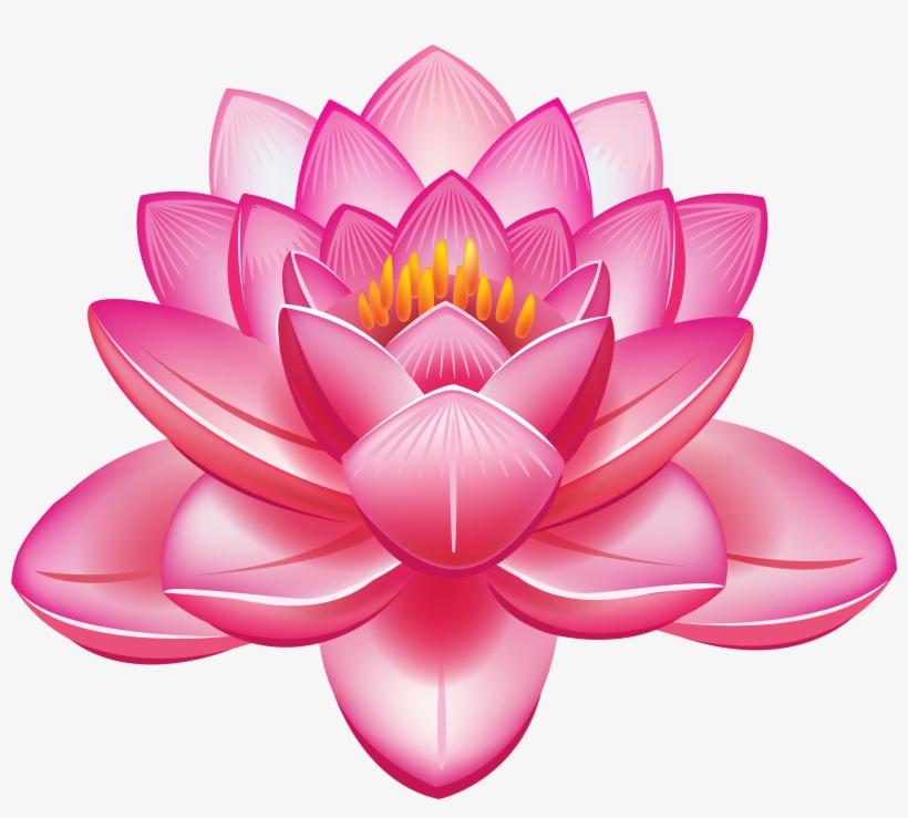 Lotus Flower Vector Png.
