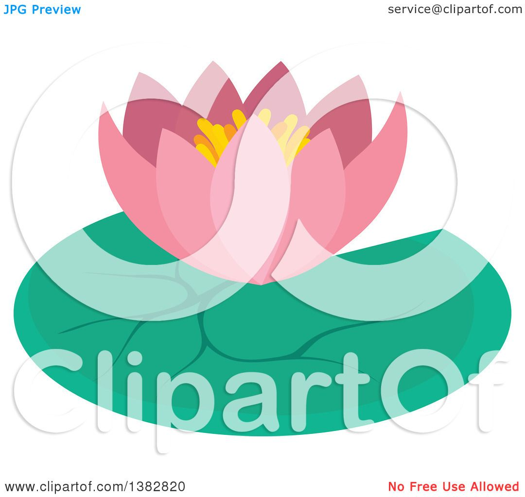 Clipart of a Pink Lotus Water Lily Flower and Pad.