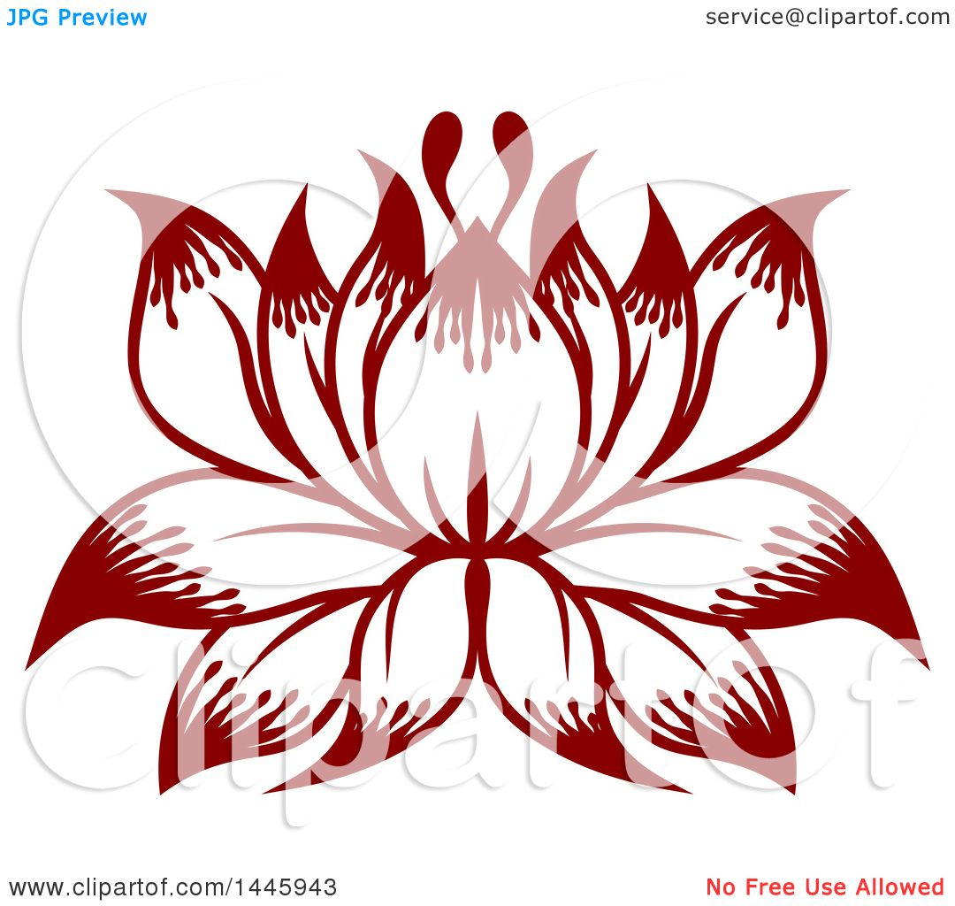 Clipart of a Beautiful Lotus Water Lily Flower.