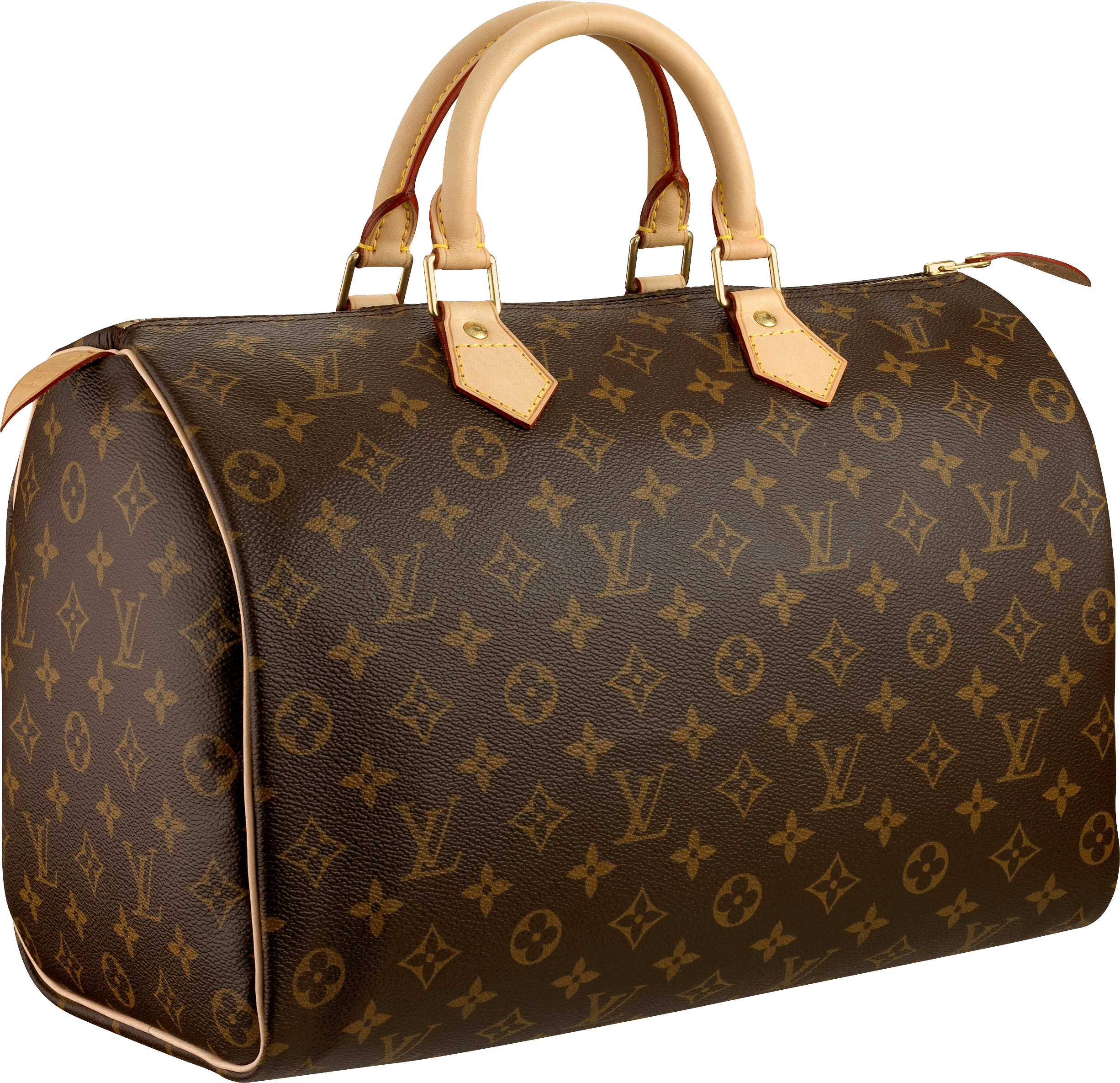 Louis Vuitton Bag Png & Free Louis Vuitton Bag.png.