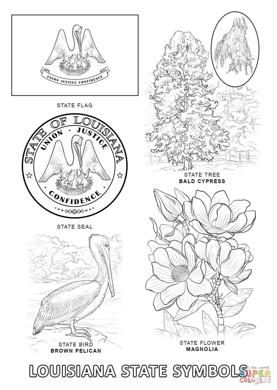Louisiana State Symbols coloring page.