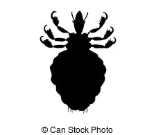 Louse Illustrations and Clipart. 448 Louse royalty free.