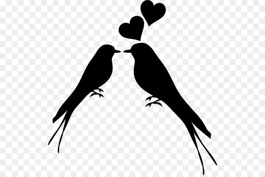 Love Birds Vector Png.