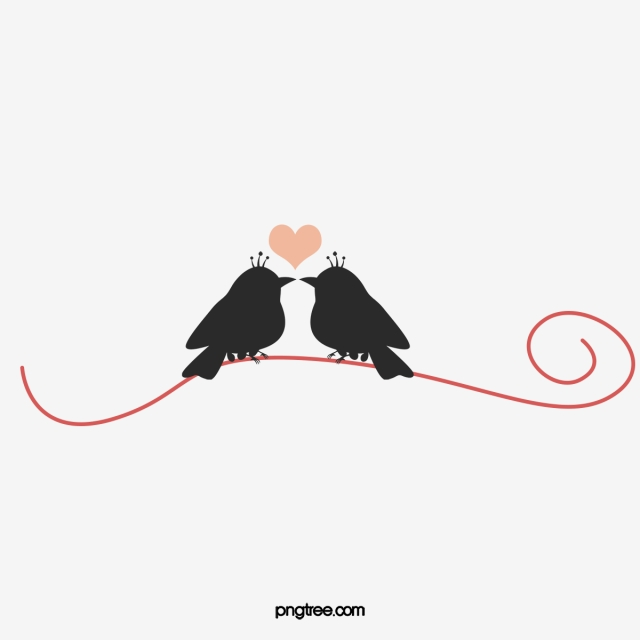Love Birds PNG Images.
