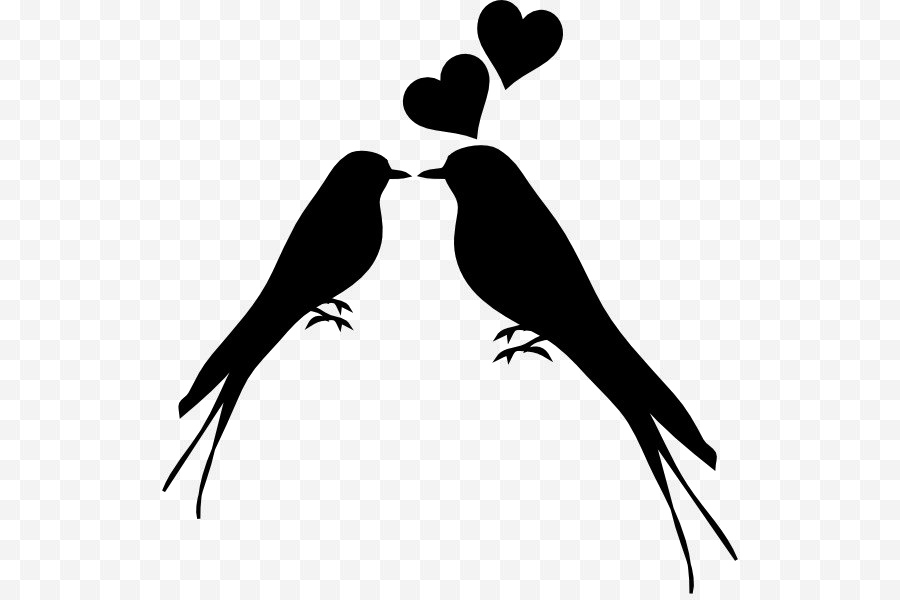 Love Birds Vector Png.