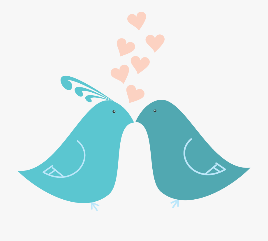 Download Love Birds Png Clipart.