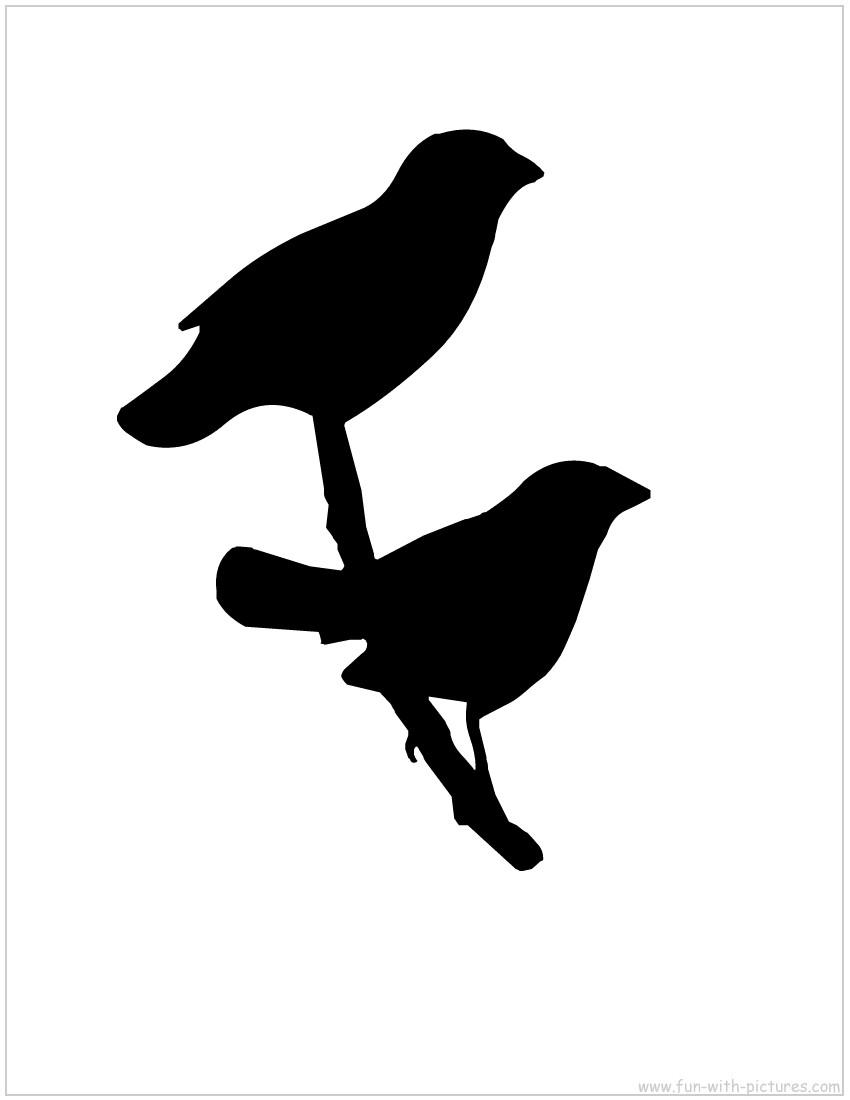 Bird Outline.
