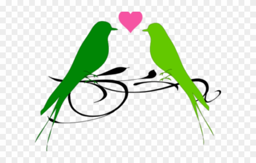 Love Birds Clipart Parrot.
