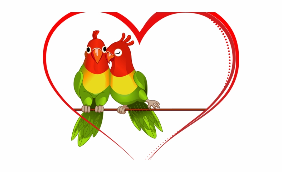 Love Birds Png Transparent Images.