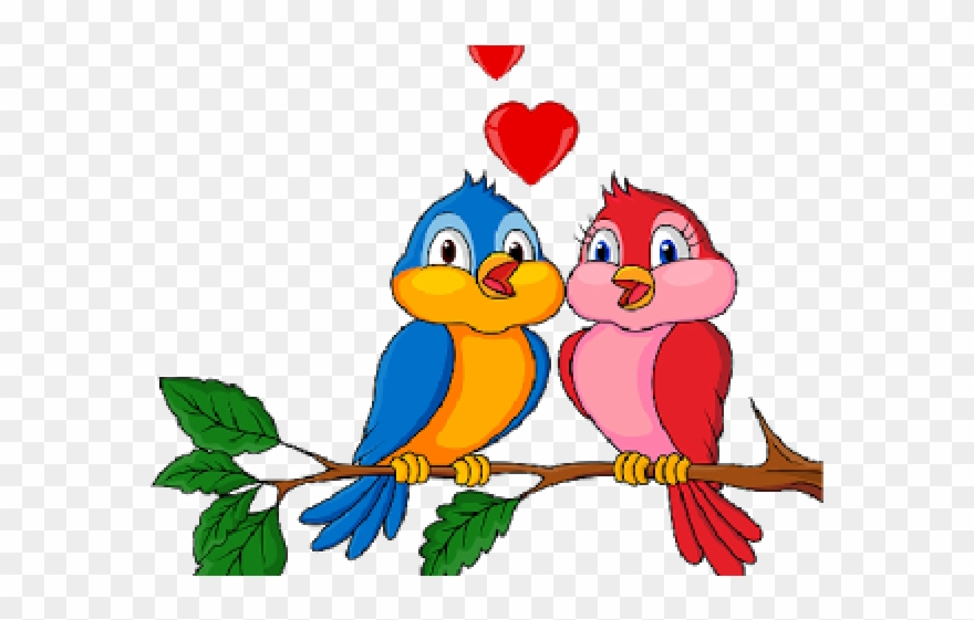 Love Birds Clipart Branch.