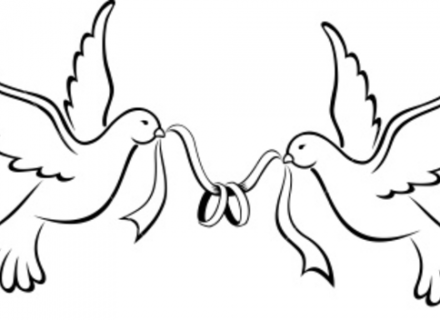 Love Birds Wedding Bands Free Images at Clkercom vector clip art.