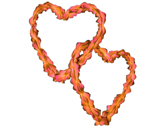 Flowery Entangled Love Hearts Transparent Background Pink Yellow.