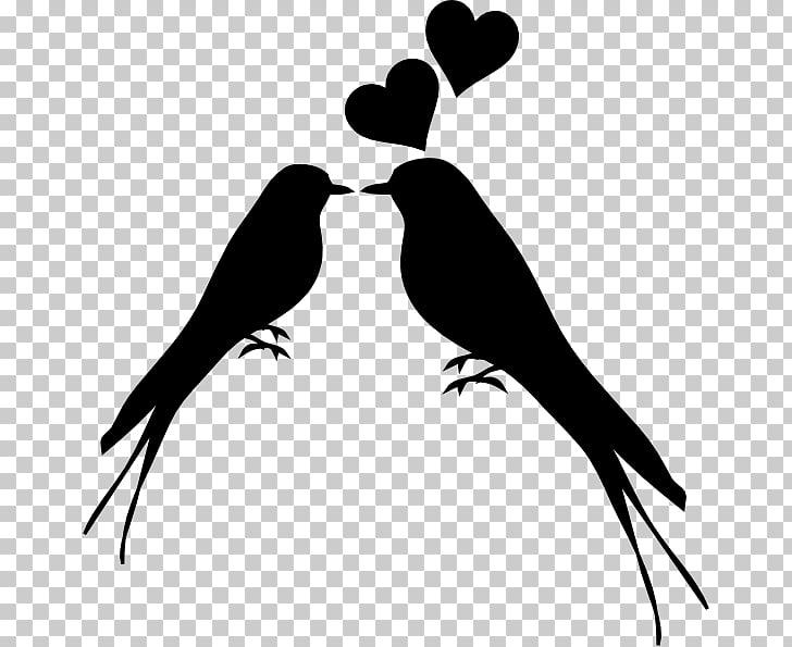 Lovebird Kiss Silhouette , Bird PNG clipart.