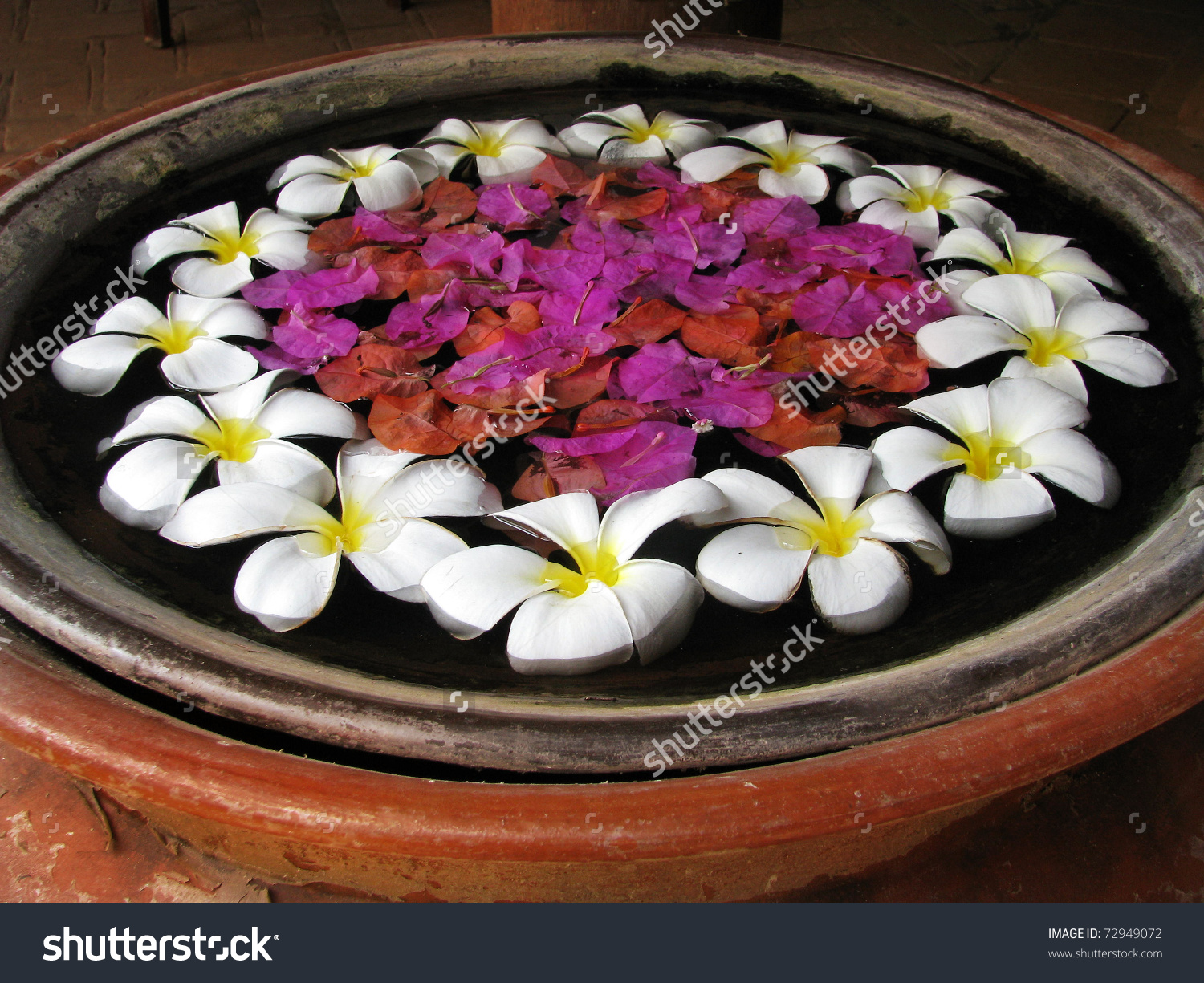 Bali Flowers Floating On Pot Lovely Stock Photo 72949072.