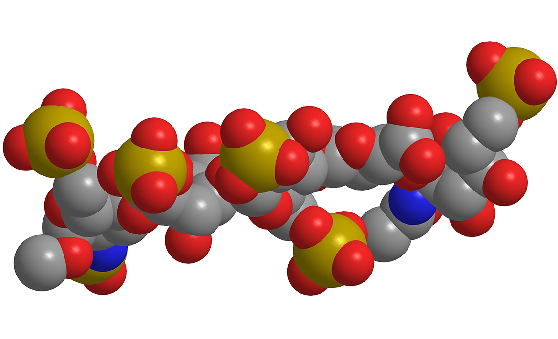 Researchers Create Synthetic Version of Heparin for Use in Kidney.