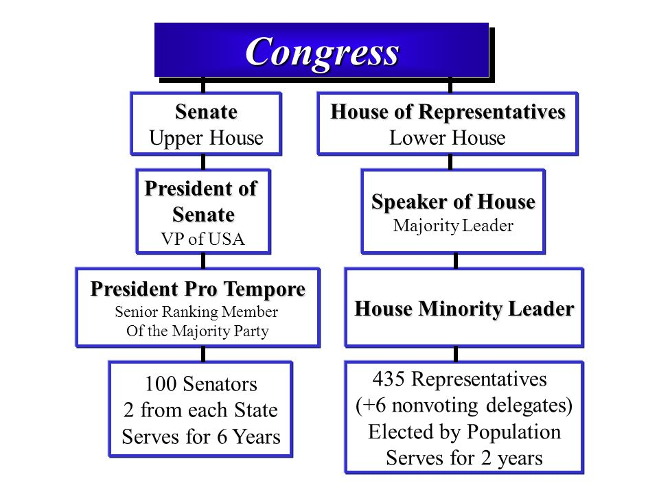 senate vs house of representatives similarities between the house and the senate essay What are the differences in the ways the house and the senate conduct  i'm  writing a grade 12 comparative essay, and i need a book that i could compare  with all  both the house and senate operate under traditional parliamentary  rules, or  the full house — unless a representative rules to send it back to  committee.