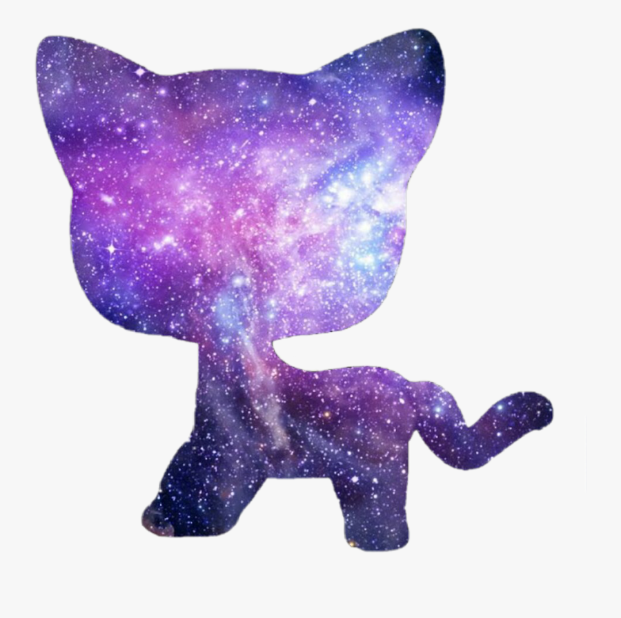 lps #shorthair #cat #galaxy.
