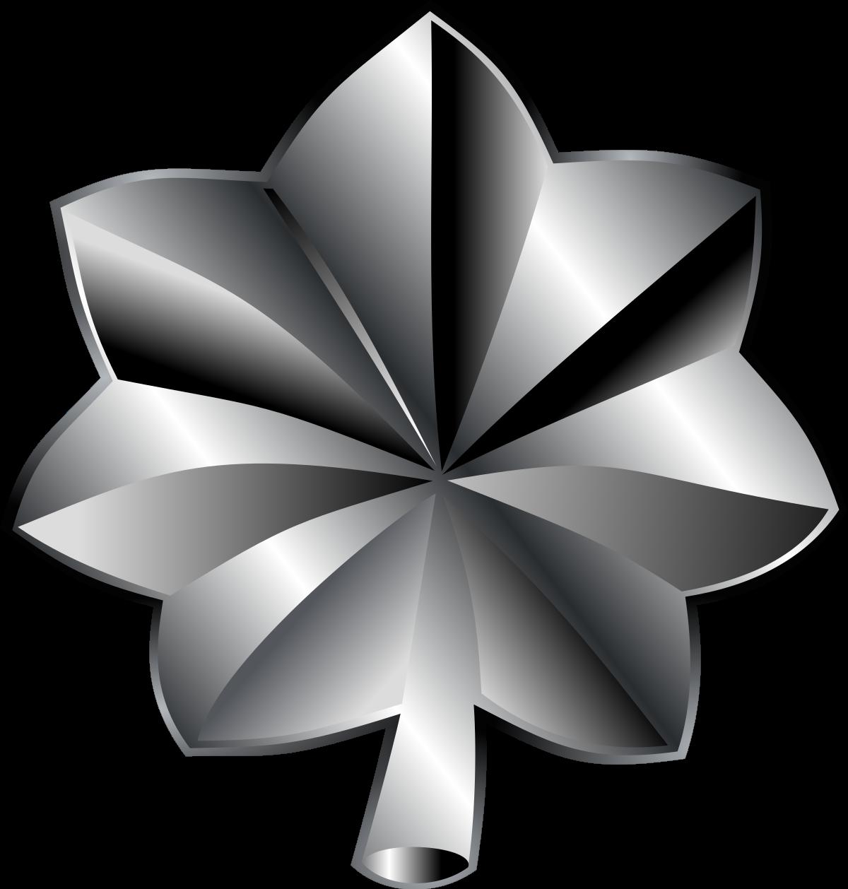 Lieutenant colonel (United States).