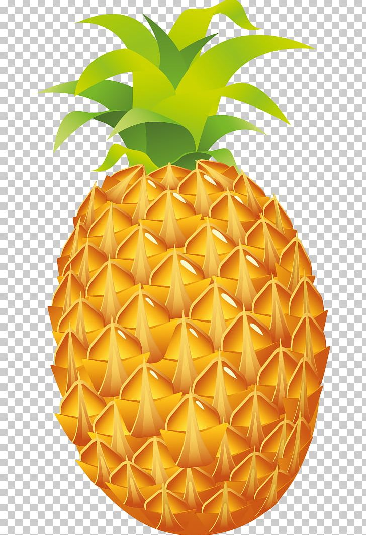 Pineapple Luau Fruit PNG, Clipart, Ananas, Blog.