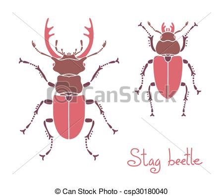 EPS Vector of Male and female stag beetle, Lucanus cervus, Stag.