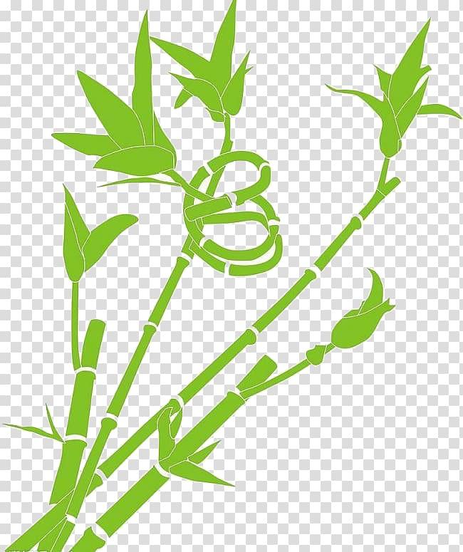 Lucky bamboo, Cartoon green lucky bamboo material.
